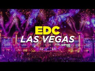 Así se vive el EDC Las Vegas - Entrevista con Armin van Buuren
