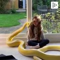 This little girl and her huge snake are best friends