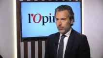 Raphaël de Andreis (Havas): «Les Gafa sont une magnifique plateforme de distribution mais il faut trouver un équilibre»