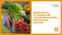 Agriculture : le nombre  de conversions au bio bat tous les records