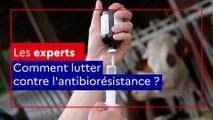 Les Experts Alim'agri: comment lutter contre l'antibiorésistance ?