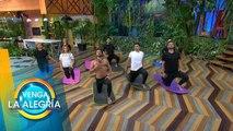 Libérate del estrés y llénate de energía positiva en nuestra sesión de yoga.   Venga La Alegría