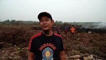 Enormes incendios consumen el bosque tropical de Indonesia