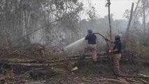 Malaisie: les images aériennes de fumées qui menacent la population et la forêt tropicale
