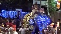 Un éléphant devient fou et fonce sur la foule pendant une parade au Sri Lanka