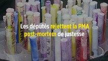 Les députés rejettent la PMA post-mortem de justesse