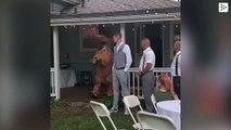A bride's sister shows up to the wedding dressed as a dinosaur