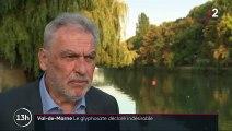 Glyphosate : le Val-de-Marne interdit le pesticide sur son territoire