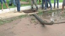 Des brésiliens découvrent un énorme anaconda coincé dans les égouts
