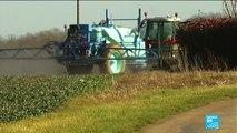 Cinq grandes villes françaises interdisent l'utilisation des pesticides