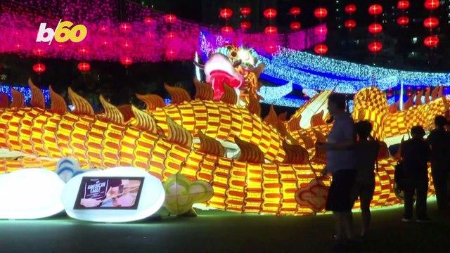 Larger Than Life Dragon Takes Over Hong Kong Park