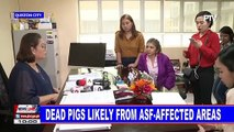 ASF possible cause of deaths of 4 pigs