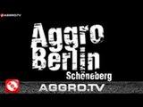 AGGRO BERLIN 'RAP CITY BERLIN DVD1' mit SIDO FLER B-TIGHT u.a. (OFFICIAL HD VERSION AGGROTV)