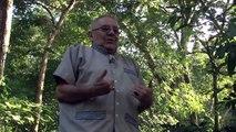 Excomandante guatemalteco niega vinculación con muerte de soldados