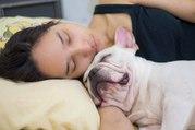 C'est officiel : les femmes dorment mieux avec leur chien qu'avec un homme