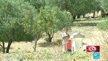 Élection présidentielle : les habitants des zones rurales tunisiennes désabusés