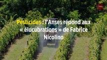 Pesticides : l'Anses répond aux « élucubrations » de Fabrice Nicolino