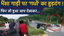 Uttar Pradesh के Meerut में High Way पर मौत की रेल का Viral Video   वनइंडिया हिंदी