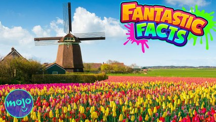 NETHERLANDS! — Fantastic Facts