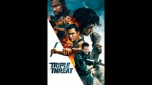 TRIPLE THREAT (2017) WEB-DL XviD AC3 FRENCH