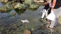 Zıpkınla öldürülen Vatoz balığı kıyıya vurdu