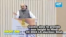 Centre aims to provide new height to Hindi till 2024 LS election Shah