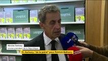 """""""J'ai de la peine pour lui"""", réagit Nicolas Sarkozy après la condamnation de Patrick Balkany pour fraude fiscale"""