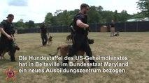 Hundestaffel des US-Geheimdienstes bezieht neues Quartier