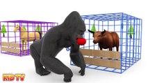 Animals Cartoons for Children