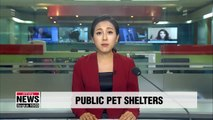 District offices open pet shelters during Chuseok