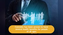 CannaBiz Offers Expert Collection Solutions for Businesses - CannaBIZ Collects