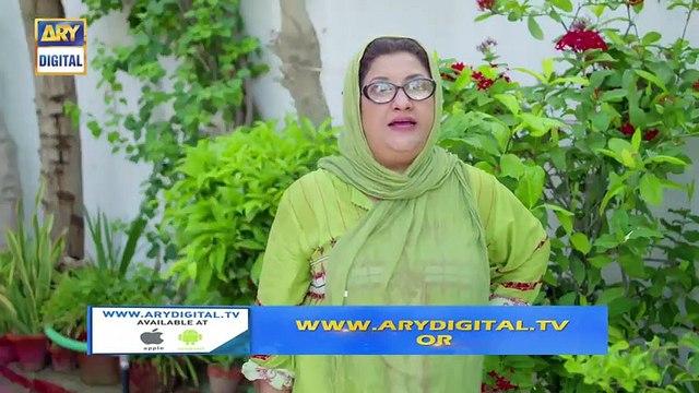 Bulbulay Season 2 - Episode 19 - 15th September 2019 - ARY Digital Drama
