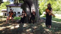 Le Tokso folk string quartet anime le road trip de Mirecourt