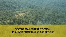 Second Mau Forest eviction targets 60,000 people