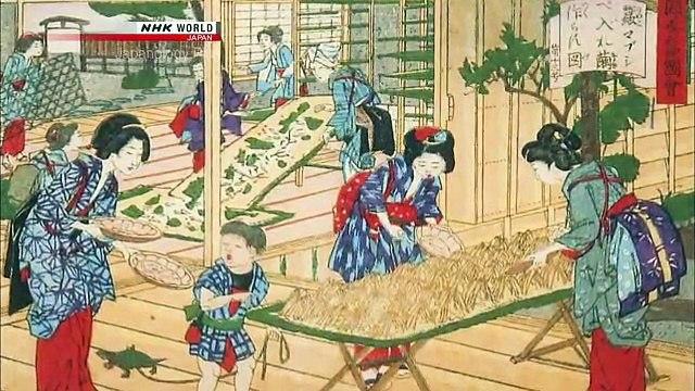 Japanology Plus - Silk