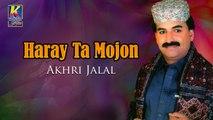 Haray Ta Mojon He Mojon - Akhri Jalal New Song - Sindhi Hit Songs