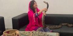 Una cantante paquistaní se enfrenta a una pena de carcel por amenazar de muerte  por envenenamiento por serpiente al primer ministro indio