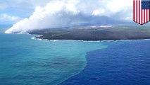 Massive algae bloom spurred by Kilauea volcanic eruption