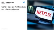 Netflix va être distribué par Canal + à partir du 15 octobre