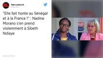 Pour Nadine Morano, Sibeth Ndiaye « fait honte» au Sénégal et à la France