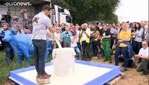 Gli agricoltori europei piangono... sul latte versato