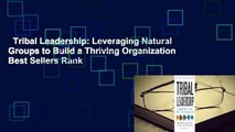 Tribal Leadership: Leveraging Natural Groups to Build a Thriving Organization  Best Sellers Rank