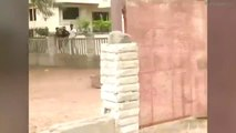 Wild Leopard Rampages Through Indian Town