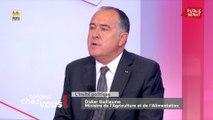 Arrêtés anti-pesticides : « J'ai bien compris que c'était un acte politique », réagit Didier Guillaume
