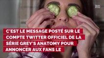 Grey's Anatomy : Holly Marie Combs et Alyssa Milano (Charmed) vont jouer les guests dans la saison 16