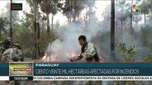 Paraguay: son 120 mil hectáreas las afectadas por incendios