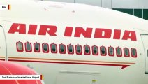 A Flight In India Was Delayed After Bees Swarm Cockpit Window