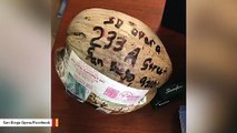 Someone Sent A Coconut To San Diego Opera