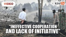 Jokowi expresses disappointment over forest fires
