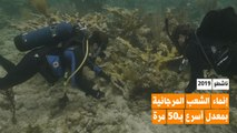 هل يمكن تسريع نمو الشعب المرجانية 50 مرة؟